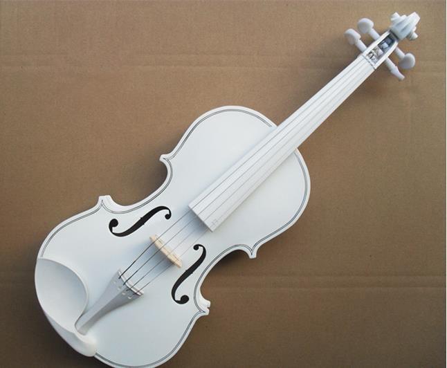 Violin Gallery (1/1)